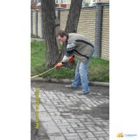 Грузчики Донецк