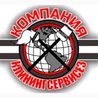 Клінінгові послуги Святопетрівське (Петрівське)