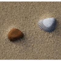 Песок речной и овражный, фасованный и навалом