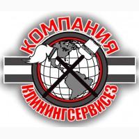 Уборка квартир Святопетровское (Петровское), генеральная уборка