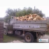Продаємо дрова колоті Луцьк дуб, граб, береза, вільха