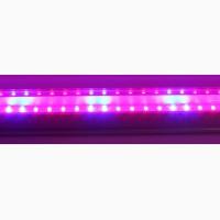 Светильник Led T8 1, 2м 16W R:B=4:2 ( 4 красных 2 синих ФИТО свет ) для растений