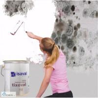 Ремонт после пожара краской ISAVAL Тиксоваль (Испания) 0.75 л белый