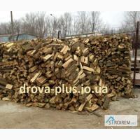 Замовити дрова колоті Торчин, Луцьк тверда порода (дуб, граб, ясен) з доставкою