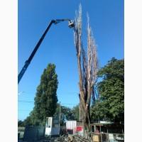 100% аккуратно спилить дерево любой сложности в Одессе