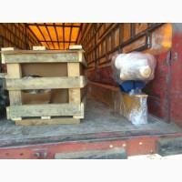 Кран балка подвесная г/п 2 тонны
