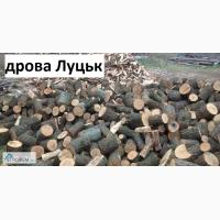 Дрова Луцьк ціна! Продажа та доставка дров по Луцьку та Волинській області