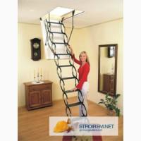 Чердачные лестницы цена
