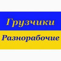 Разнорабочие подсобники Одесса