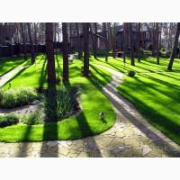 Создание газонов. Газон Киев