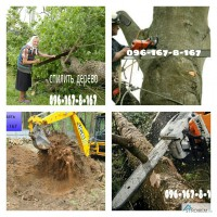 Спилить дерево, удаление дерева Киев, киевская область